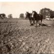 Farming photos from the Fredericks